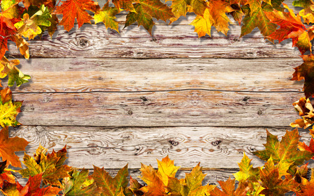 Bright autumn leaves old wooden surface with copy space Foto de archivo - 108582655