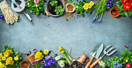 Gardening tools and spring flowers on the terrace in the garden Archivio Fotografico - 119161669