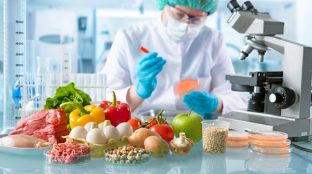 Food quality control expert inspecting specimens of groceries in the laboratory Standard-Bild