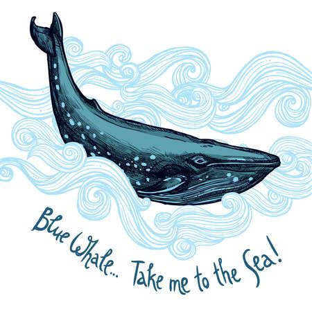 ballena azul: Ilustraci�n Linda Con la ballena azul