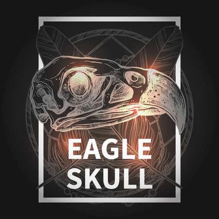 cranial skeleton: Fashionable Hipster Design With Eagle Skull On Black Background