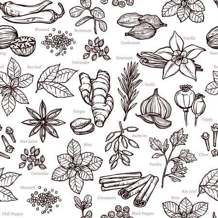 Kräuter- und Gewürz Sketch Nahtlose Monochrom-Muster Vektorgrafik