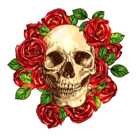 Skull With Roses Hand Drawn Illustration Illustration