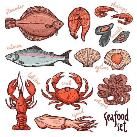 Seafood collection, hand drawn color illustration with lobster, octopus, squid, salmon, flounder, crab, mussels, oysters and shrimps on white background Ilustração