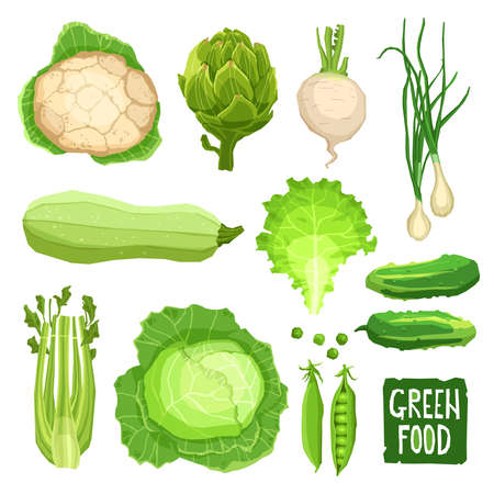 Ensemble de légumes verts frais, collection d'aliments sains et biologiques avec chou-fleur, chou, artichaut, oignons, ail, salade, courge, concombre et céleri