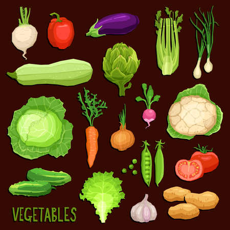 Set of fresh vegetables on dark background, healthy and organic food collection