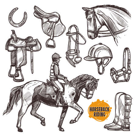 Hand Drawn Equipment For Horses. Horse And Horseback Riding Sketch Set