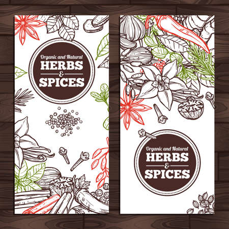 Herbs And Spices Design. Vertical Banners Çizim