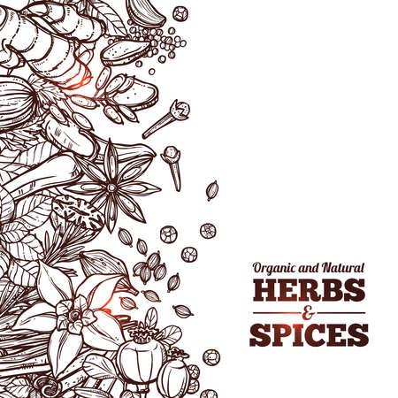 Kruiden En Specerijen Monochrome Achtergrond Stock Illustratie