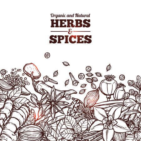 Herbs And Spices Monochrome Background With Place For Text Vetores