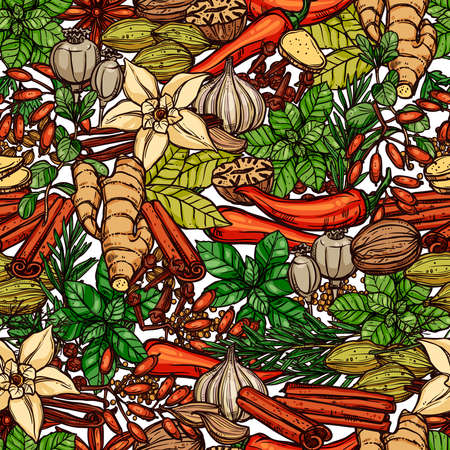 Naadloze kruiden en specerijen kleurenpatroon