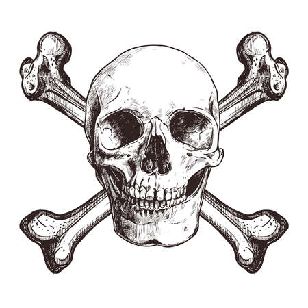Crâne avec deux os croisés Vecteurs