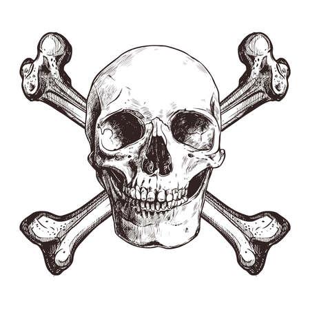 Schedel met twee gekruiste beenderen Vector Illustratie