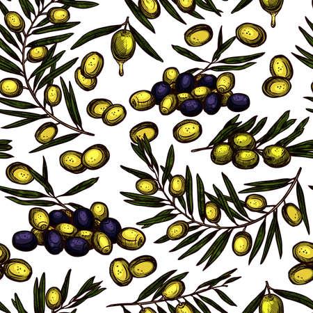 Sketch Hand Drawn Color Olive Oil Seamless Pattern Wiyh Oil Branches Ilustração