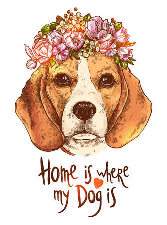 Portrait Of Beagle Dog With Flower. Sketch Hand Drawn Color Style