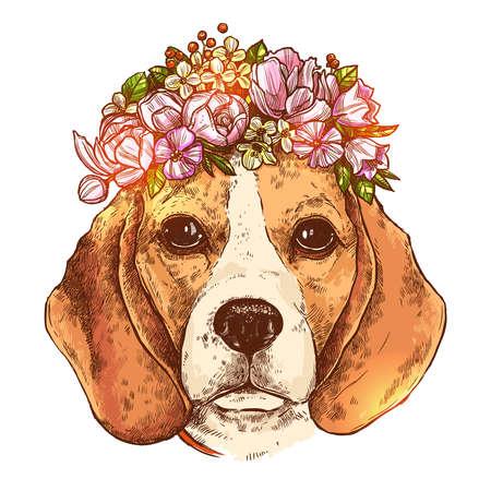 Portrait de chien Beagle avec couronne florale de fleurs. Croquis de style de couleur dessiné à la main