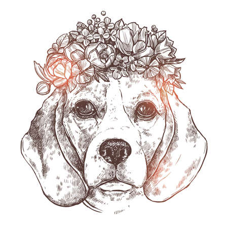 Portrait Of Beagle Dog With Flower Floral Wreath. Sketch Hand Drawn Monochrome Style Illustration