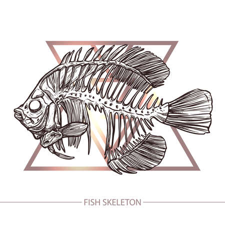 Fish Skeleton. Hand Drawn Sketch Style. Fish On The Geometric Background. Fashion Print And Hipster Poster Illustration
