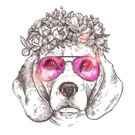 Portrait Of Beagle Dog With Flower Floral Wreath And Sunglasses. Sketch Hand Drawn Vintage Style. Hipster Animal