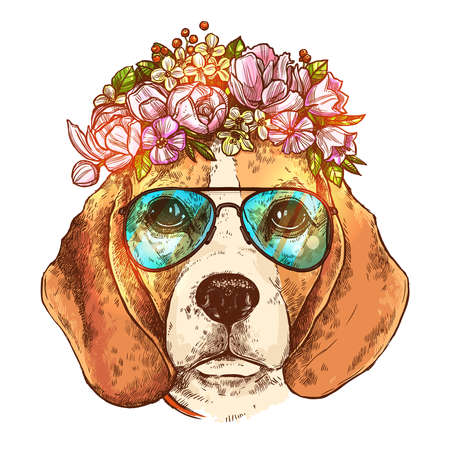 Portrait Of Beagle Dog With Flower Floral Wreath And Sunglasses. Sketch Color Hand Drawn Vintage Style. Illustration