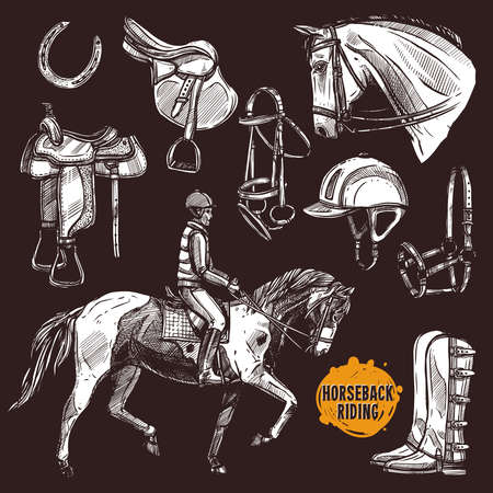 Hand Drawn Equipment For Horses. Horse And Horseback Riding Sketch Set On Chalkboard