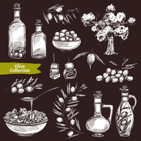 Hand Drawn Olive Oil Collection On Chalkboard With Sketch Olive Tree, Olive Branches And Olive Bottles Ilustracja