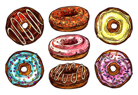 Bright And Colorful Set Of Donuts In Sketch Style. Collection Of Hand Drawn Dessert Illustration