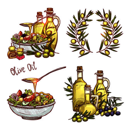 Olive Oil Sketch Set. Four Color Olive Oil Concepts In Hand Drawn Style Zdjęcie Seryjne - 108528220