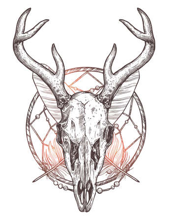 Sketch of deer skull with dreamcatcher and feathers boho