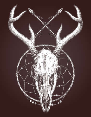 Sketch of deer skull with dreamcatcher and Indian arrows. Illustration