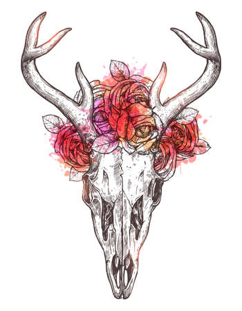 Sketch of deer skull with flowers wreath.
