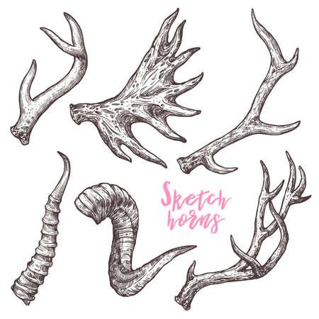 Colección de cuernos de diferentes animales dibujados a mano. Boceto de cuernos de ciervo, antílope, carnero, oveja, alce Ilustración de vector