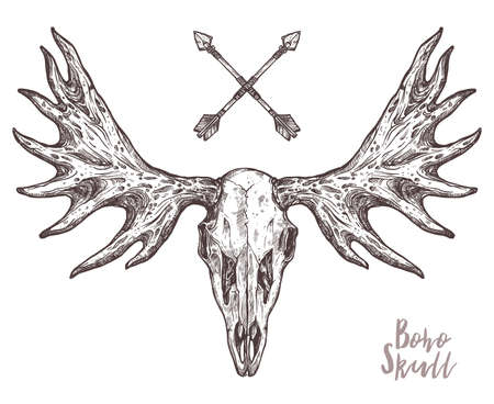 Sketch Of Elk Skull With Tribal Arrows. Boho And Hipster Hand Drawn Illustration. Anatimical Drawing Of Skull With Horns Ilustracja