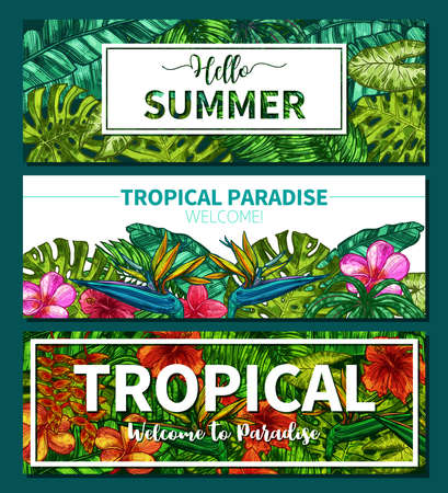 Stylish Colorful Typographical Summer Horizontal Banners. Sketch Hand Drawn Design With Tropical Plants And Flowers Illustration