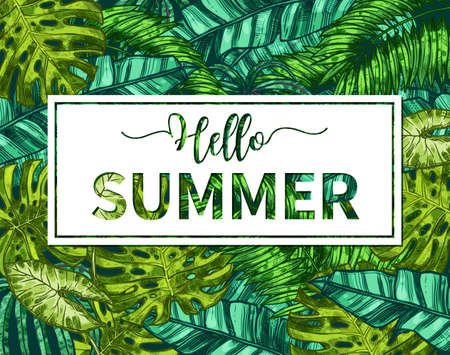 Stylish Typographical Summer Poster. Sketch Hand Drawn Design With Tropical Plants