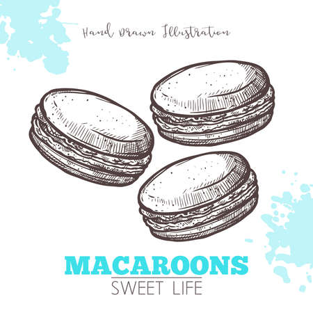 Sketch Of Sweet Macaroons. Dessert Bakery In Hand Drawn Vector Style