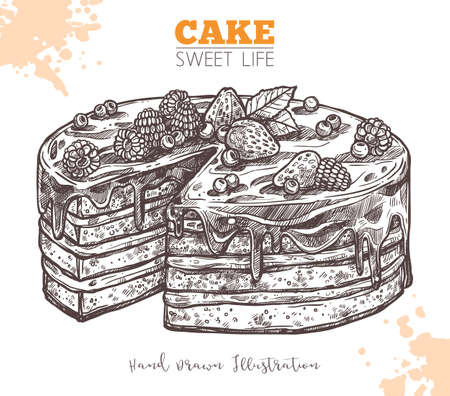 Sweet Cake With Cream And Berries. Sketch Hand Drawn Vector Chocolate Cake Illustration