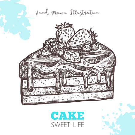 Sweet Piece Of Cake With Cream And Berries. Sketch Hand Drawn Vector Chocolate Birthday Cake Illustration