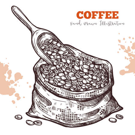Canvas bag with coffee beans and scoop, sketch. Harvest for sale. Hand drawn icon isolated on white. Vector illustration