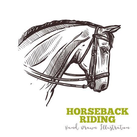 Pferdekopf mit Zaumzeug in handgezeichneter Profilskizze. Reitkonzept. Illustration im Gravurstil. Vektor isoliert auf weißem Hintergrund