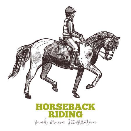 Rider on horse, horseback ridding handdrawn sketch. Jockey on horse, equestrian concept illustration in engraved style. Vector isolated on white background
