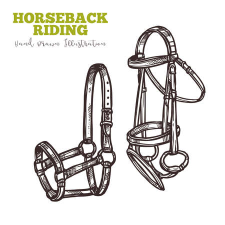 Two varieties of horse bridle. equipment for ride. Image for instructions, manuals, training books and shops. Horseback ridding concept. Vector hand drawn sketch isolated on white background