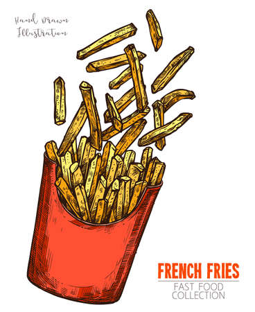 Red cardboard box with french fries, handdrawn sketch isolated on white background. Popular fast food dish. Color image in engraving style. Vector illustration