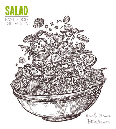 Hand drawn sketch of fresh salad with vegetable. Healthy food dish, vegetarian cucumber, tomato, sweet peppers, onions and olives. Vector isolated on white background 일러스트