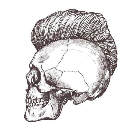 Hand drawn human skull with trendy haircut in the profile. Vector sketch engraving barbershop illustration 版權商用圖片 - 126577706