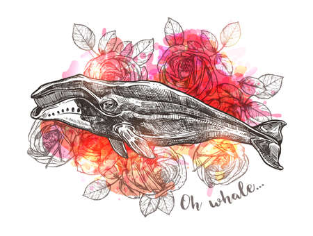 Concept art with sketch bowhead whale and rose flowers. Vector trendy boho hand drawn illustration for print or poster. Symbol of dreams, harmony and adventure