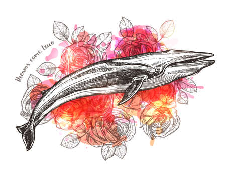 Rose and whale flowers. Vector trendy boho hand drawn illustration for print or poster. Symbol of dreams, harmony and adventure Ilustracja