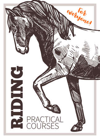 Design for horse riding poster with hand drawn horse. Sketch illustration for riding school, lessons, equestrian club or academy Ilustração