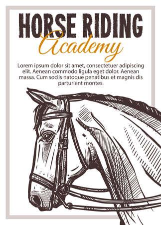 Horse riding academy vector hand drawn poster. Sketch illustration 일러스트