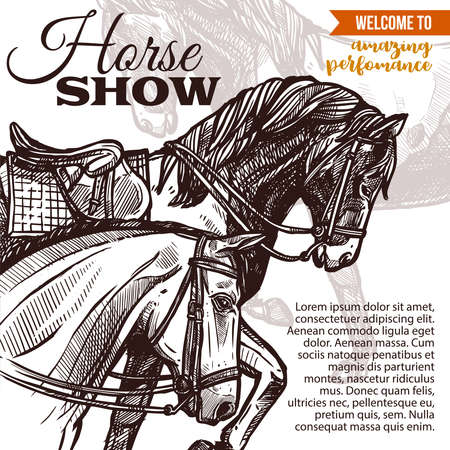 Design for horse riding poster with hand drawn horses. Sketch illustration for riding school, lessons, equestrian club or academy